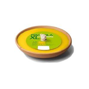 Fiaccola citronella xl-page0001